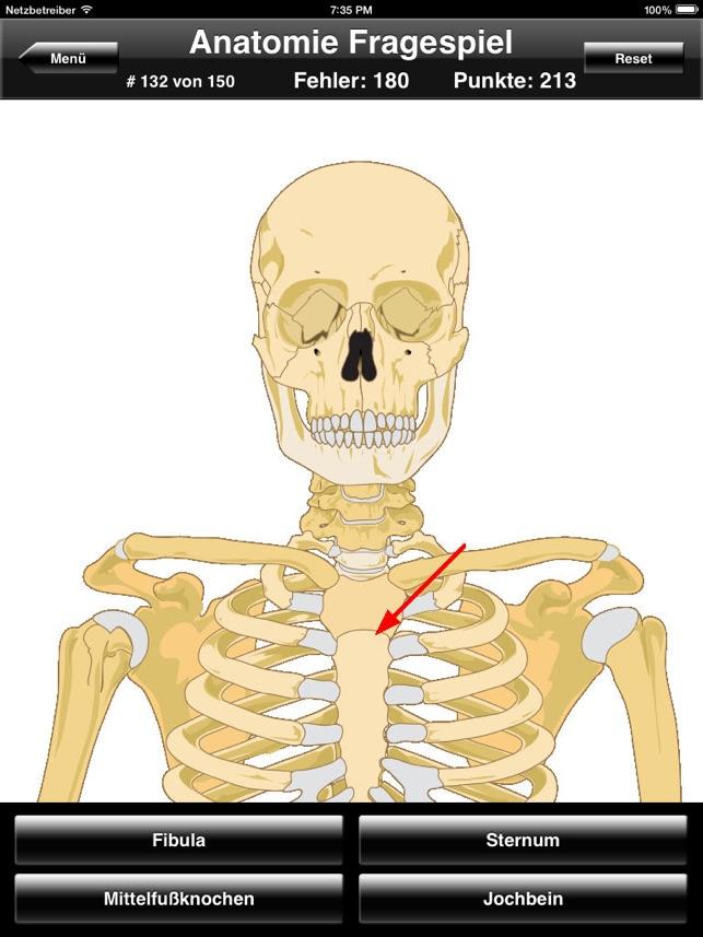 Anatomie Fragespiel für iPad im App Store
