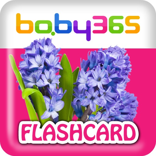 baby365-bilingual flash cards-Flowers