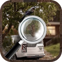 Codes for Hidden Objects??? Hack