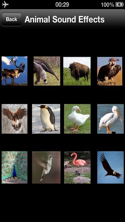 Animal Sound Effects Free