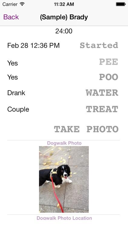Dog Walk by ePetfolio