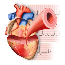 Miniatlas Cardiology