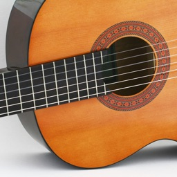 Discover Musical Instruments Free