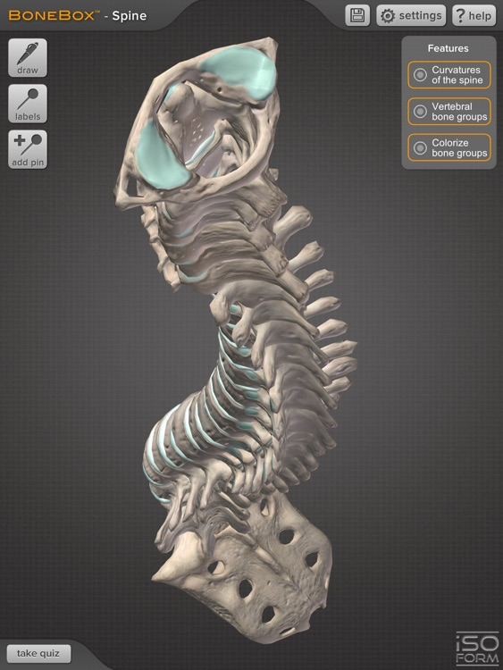 BoneBox™ - Spine Viewer screenshot-4