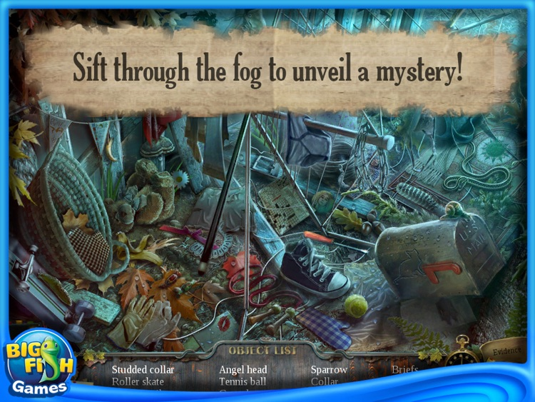 Enigmatis: The Ghosts of Maple Creek Collector's Edition HD