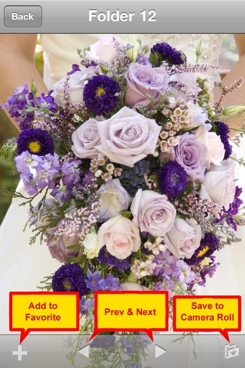 Wedding and Flower Bouquet screenshot-4