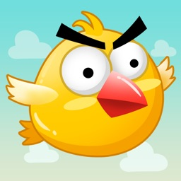 Crazy Bird - Flying