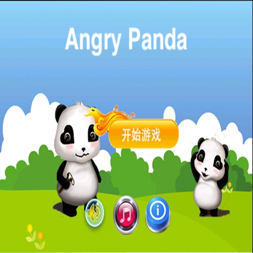Angry Panda.Frustrated Panda