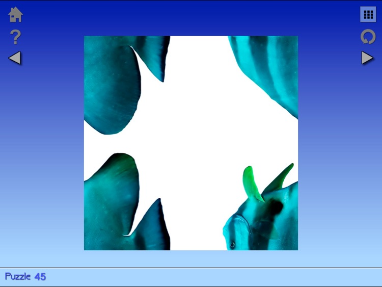 Turnings Image Puzzles Series 3 by IntelleQuest Education Company
