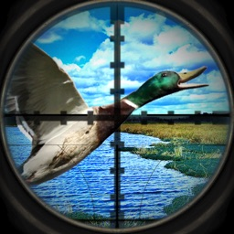 A Sling-Shot Duck Hunt-ing Adventure: First Person Snipe-r Shoot-er Game Free