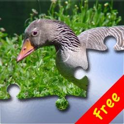 Puzzle! Animals Free