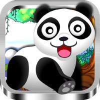 Codes for Tik Tok Panda Hack