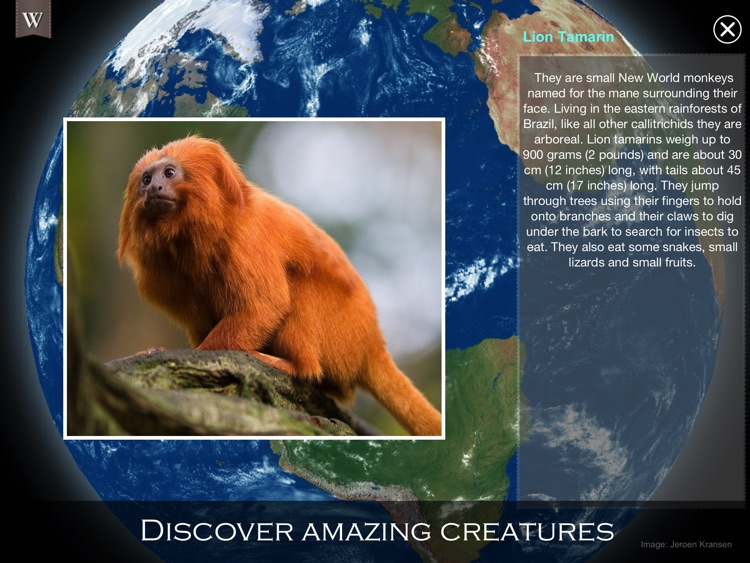 Animal Wonders of the World