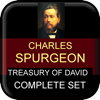 Treasury of David Komplett-Set - Vision for Maximum Impact, LLC