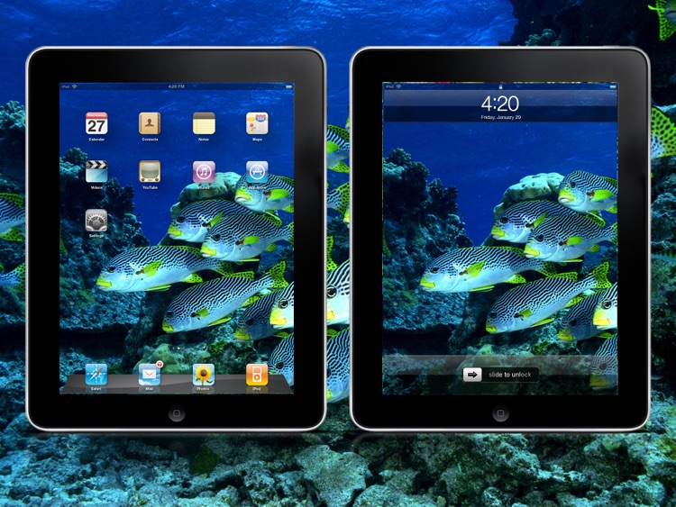 Cool Seabed World Wallpapers HD Lite