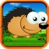 Hedgehog Dash Bounce