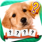 Word & Picture Quiz: one word, one photo, one answer! icon