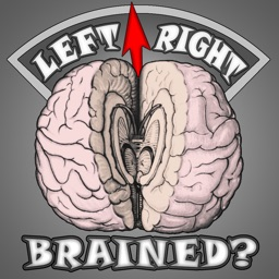 Brain Test ~ I'm Left or Right brained? ~ A brain side hemisphere dominance quiz