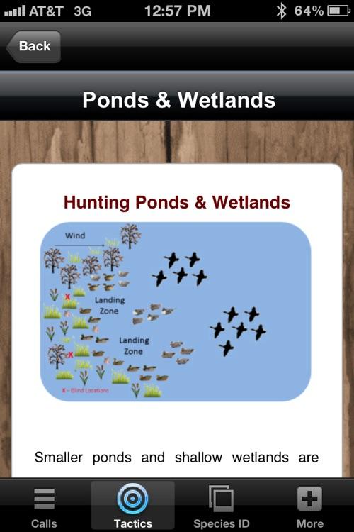 Duck Calls & Tactics screenshot-4