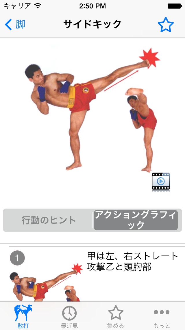 散打 武術散打スクール(ライブデモグラフィック映像)のおすすめ画像4