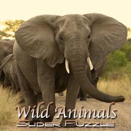 Wild Animals Slider Puzzle HD