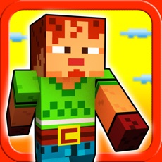 Activities of Seed Craft Blocks - Mine Mini Jump For Survival In A 3D Pixel World