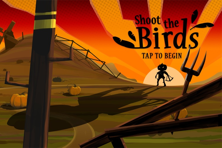 Shoot The Birds screenshot-4