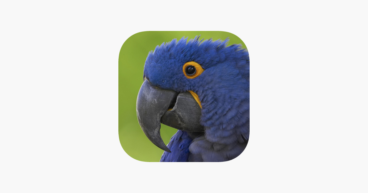 Sharpen Me Free - the best image sharpening / deblurring app