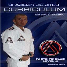 BJJ White to Blue Lvl.4 Curriculum Step-by-Step Jiu Jitsu System