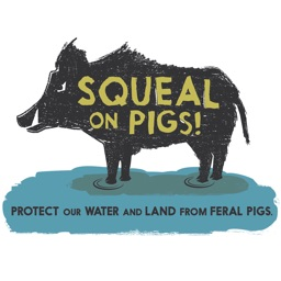 Squeal on Pigs