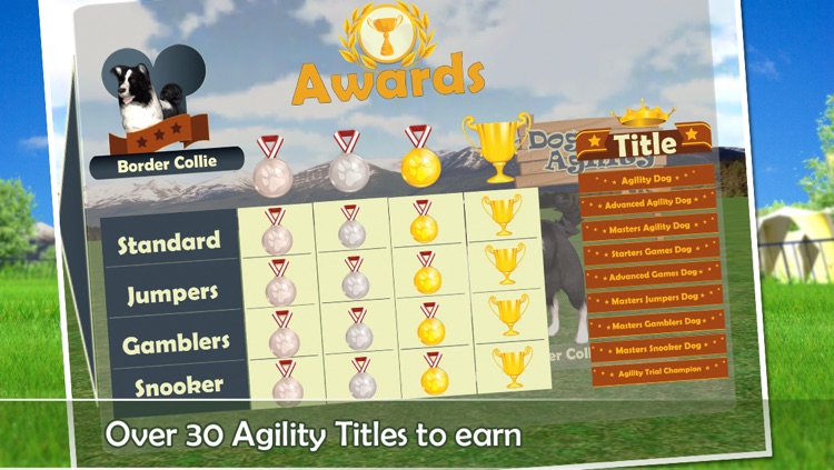 Dog Agility 3D screenshot-3