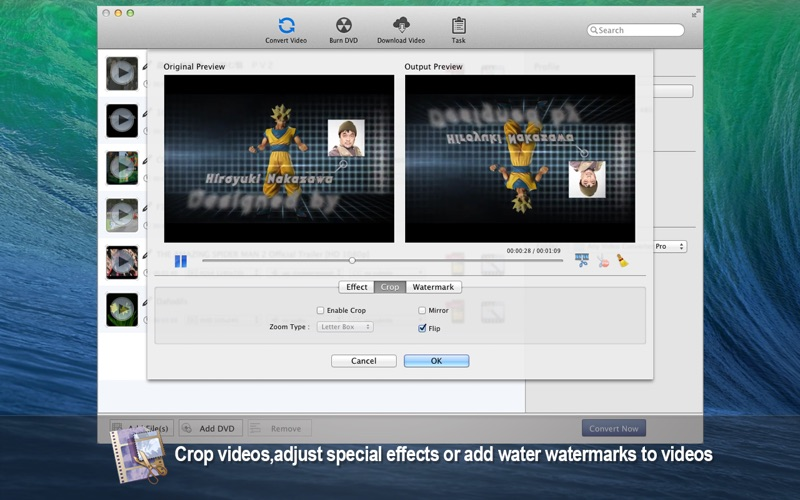 Any Video Converter Pro Screenshot