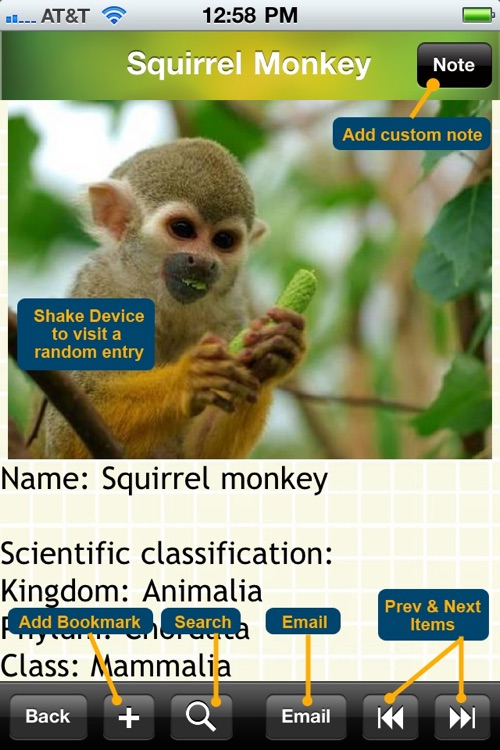Primates Bible screenshot-4