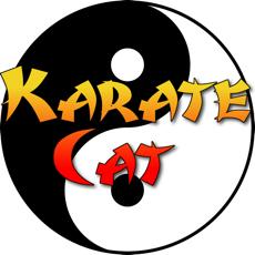 Activities of Karate Cat