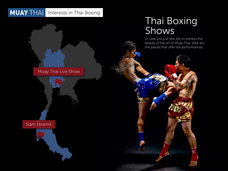 Muay Thai screenshot-3