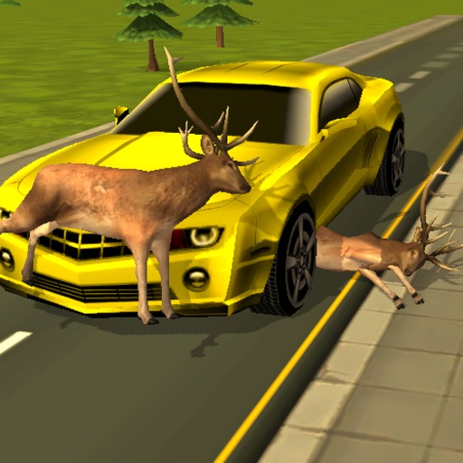 Road Kill 3D : Highway Animal Avoidance
