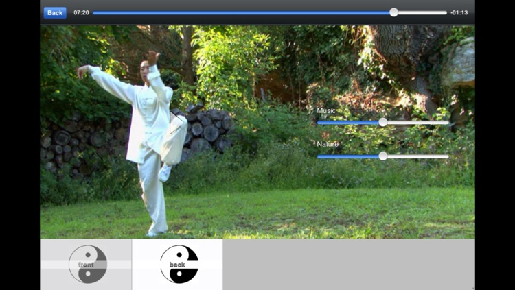 Tai Chi Yang screenshot-1