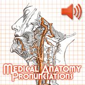 Anatomy Pronunciations app review