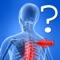 """Anatomy Spine Quiz"" is one more quiz to test your knowledge of human anatomy"