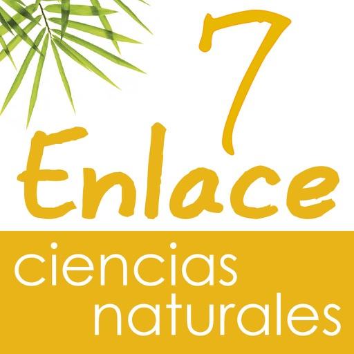 Vector Z   Enlace Ciencias Naturales 7