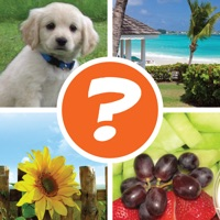 Codes for 4 Pics 1 Word Puzzle: More Words Hack