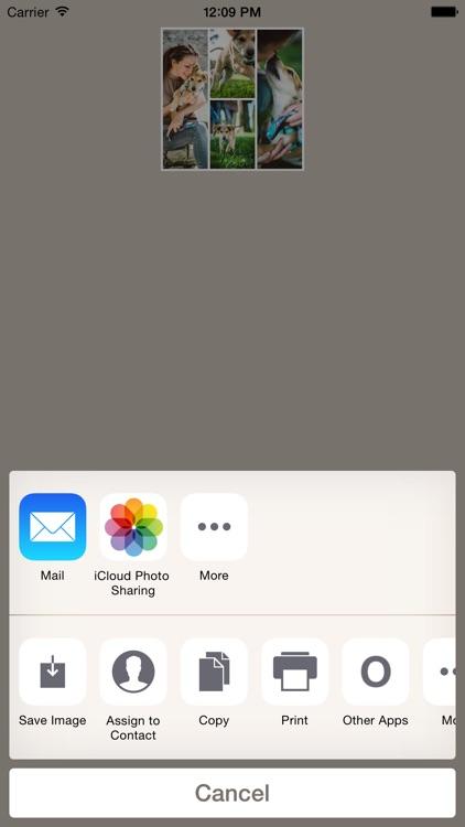 Diptic PDQ screenshot-3