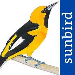 All Birds Ecuador - a complete field guide to all the bird species recorded in Ecuador