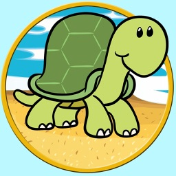 beautiful turtle for all kids - free game