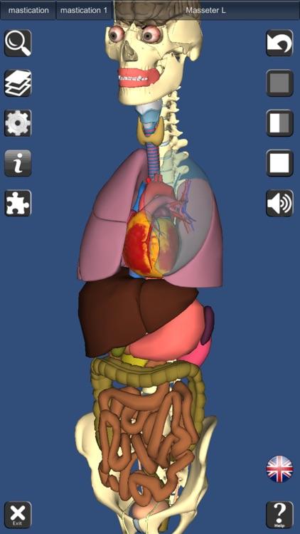 3D Anatomy screenshot-4
