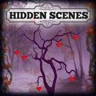 Hidden Scenes - Holidays icon
