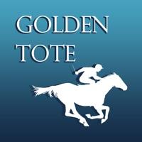 Codes for Golden Tote Hack