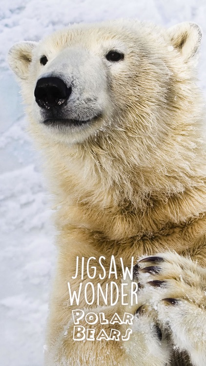 Jigsaw Wonder Polar Bears for Kids screenshot-3