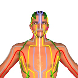 Health by Acupressure - 3D
