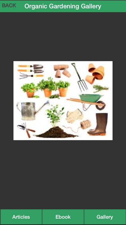 Organic Gardening Guide - A Guide To Growing Your Own Organic Vegetables